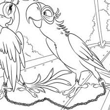 tag cute birds coloring pages cute birds colouring