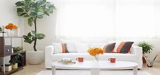 taobao lynx home design banner background Floor Board Interior