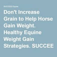 can fat help horses gain weight in winter horse thoroughbred