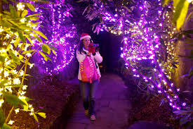 Rock City Garden Of Lights Trail Of Lights Chattanooga Attractions Sparkle For The