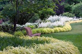 grass garden design 1000 images about ornamental grasses on