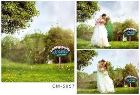 wedding backdrop background 2017 wholesale garden scenic new photos wedding