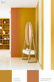 48 best dulux 2015 images on pinterest color trends colors and