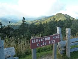 mt mitchell on top of the east
