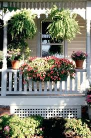 no sun plants best plants for front porch front porch flowers for summer plants