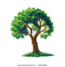 realistic tree stock images royalty free images vectors