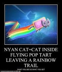Cat Rainbow Meme - question about nyan cat s rainbows do you believe that poll