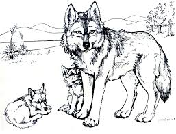 wolf wild animals coloring pages for kids printable free arctic