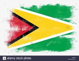 Guyana Flag Flag Of Guyana Stock Photos U0026 Flag Of Guyana Stock Images Alamy