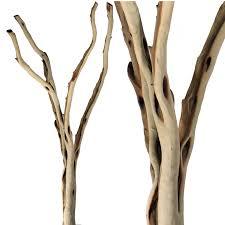 manzanita branches for sale manzanita forks and sandblasted