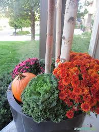fall planters life on virginia street