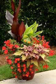garden ideas plants for pots plant tubs square plant pots large