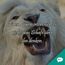sprüche löwe schöne spruchbilder deutsche sprüche