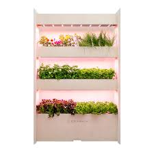 the wall farm indoor vertical garden walled garden vertical