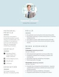 Professional Resume Writing Tips Resumes For Experienced Professionals Resume Template And