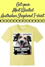 australian shepherd quotes most wanted australian shepherd t shirt dog tee shirts 1