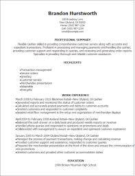 steward resume