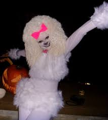 halloween costume french poodle halloween costume homemade