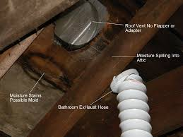 Bathroom exhaust fan vent through roof pinterdor