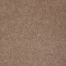 Shaw Carpet Area Rugs by What U0027s Up Acorn Shaw Carpet Rite Rug