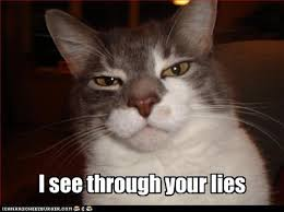 Lies Memes - i see through your lies cheezburger funny memes funny pictures