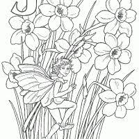 458 fairies images coloring books coloring