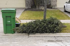 where to dispose of holiday lights trees in naperville