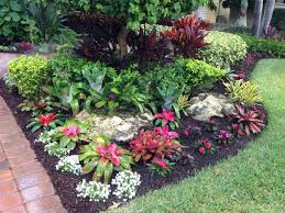 Florida Garden Ideas Tropical Bromeliad Garden Design My Landscape Designs