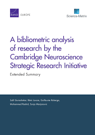 A bibliometric analysis of research by the Cambridge Neuroscience Strategic Research Initiative  Extended Summary