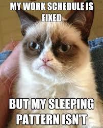 Work Work Work Meme - my work schedule is fixed cat meme cat planet cat planet