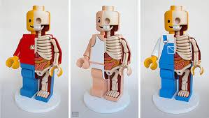 Cartoon Human Anatomy The Anatomy Of Your Favorite Childhood Toys Revealed By Jason Freeny