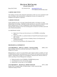 Loss Mitigation Resume Download Vice President Call Center Operations In Fl Resume