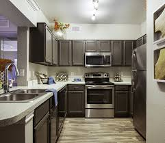 Kitchen With Track Lighting by Neo Midtown Apartments Rentals Dallas Tx Apartments Com