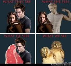 Funny Twilight Memes - twilight true story twilight saga saga and humour