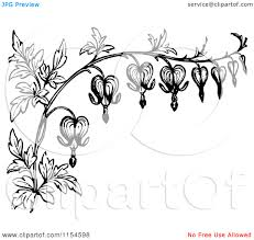 heart and flowers tattoo stylized bleeding heart flower drawing white border of