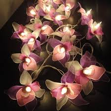 Flower String Lights by Cozy Pink Flower Fairy Lights 37 Pink Rose Fairy Lights Wholesale