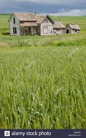 near pullman washington state palouse country abandoned house