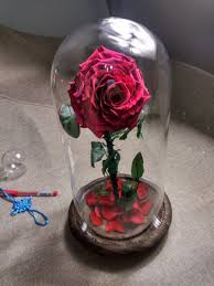 wholesale real natural preserved roses in glass dome tubes