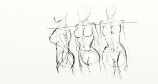 Images Female Anatomy Female Anatomy 1 By Thelunarmoon On Deviantart