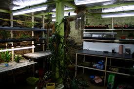 chambre de culture fait maison chambre de culture le jardin de vincent