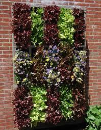 Vertical Vegetable Garden Design Vegetable Vertical Beds