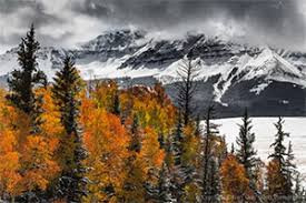 colorado photographers colorado autumn photography workshop san juan mountains 2016