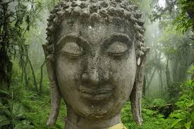 buy buddha wallpaper for home or office decor