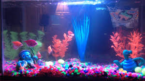 glow fish with rainbow light and glow in the dark trees and rocks