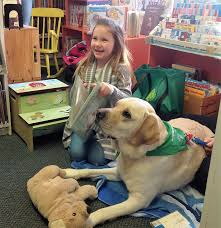 Comfort Dogs Certification Welcome To Therapy Dogs Of Vermont Serving Vt U0026 Beyond