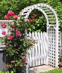 magnificent trellis design ideas for a modish garden revamp