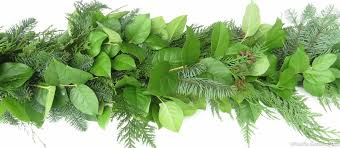festive fresh garland salal evergreens by pacific