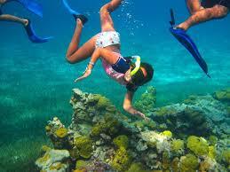 jeep snorkel underwater cozumel palancar snorkeling tour cozumel cruise excursions