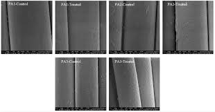 physical chemical and morphological characterization of polyamide