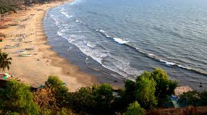 5 reasons you must visit goa in december india